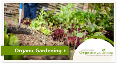 Sustainable Living - Organic Gardening